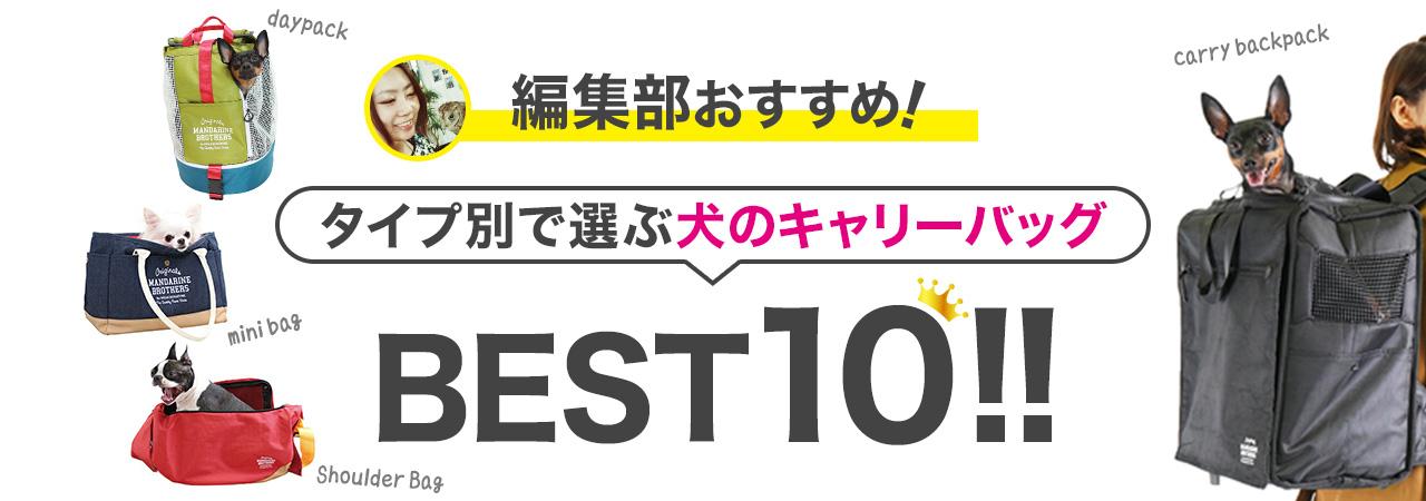 編集部おすすめ!タイプ別で選ぶ犬のキャリーバッグBEST10