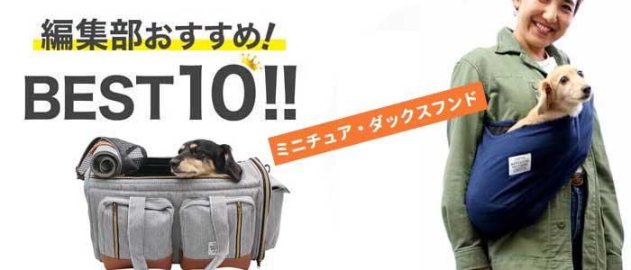 キャリーバッグに収まったミニチュアダックスと抱っこ紐のイメージ