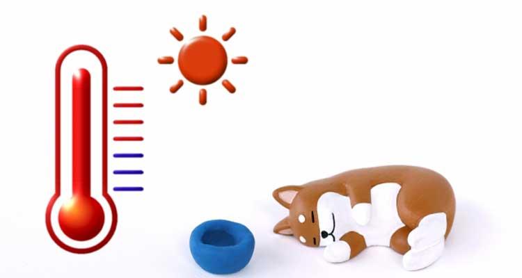 犬が室内で涼むイメージ