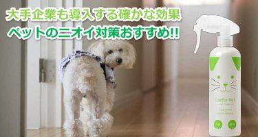 室内犬と消臭スプレー